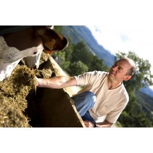 Fromages du Buissonet produits à Selonnet dans les Alpes de Haute-Provence