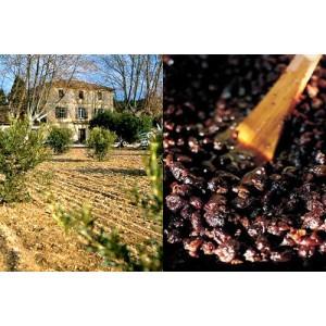 A.O.P Vallée des Baux de Provence - olives maturées
